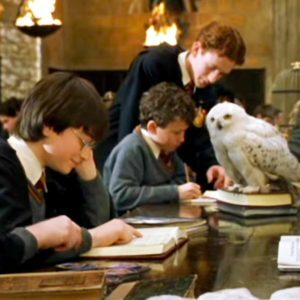 Hedwig's Theme (Harry Potter), Best Online Piano Keyboard, Virtual Piano